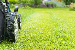 Something As Simple As Cutting The Grass Could Lead To You Needing An Attorney