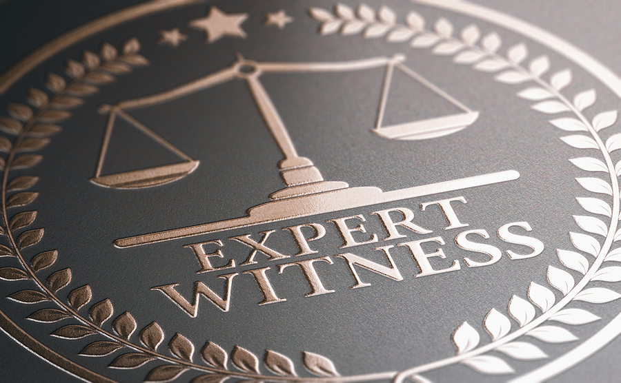 What Is An Expert Witness And How Can They Help My Auto Accident Case?